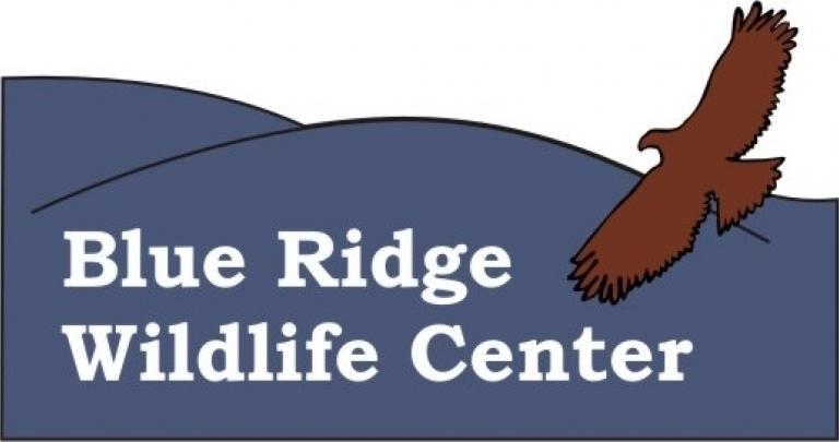 Blue ridge wildlife center auction