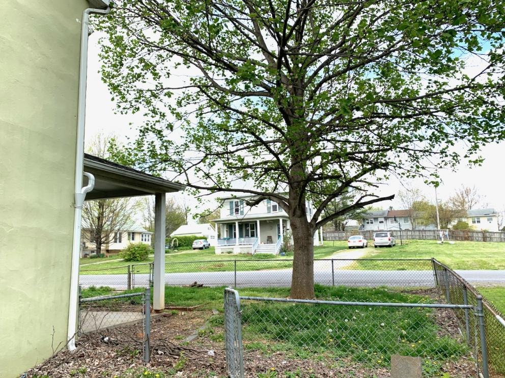 215 liberty street berryville va - 6
