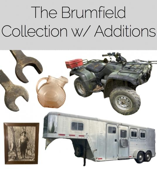 Brumfield (1)