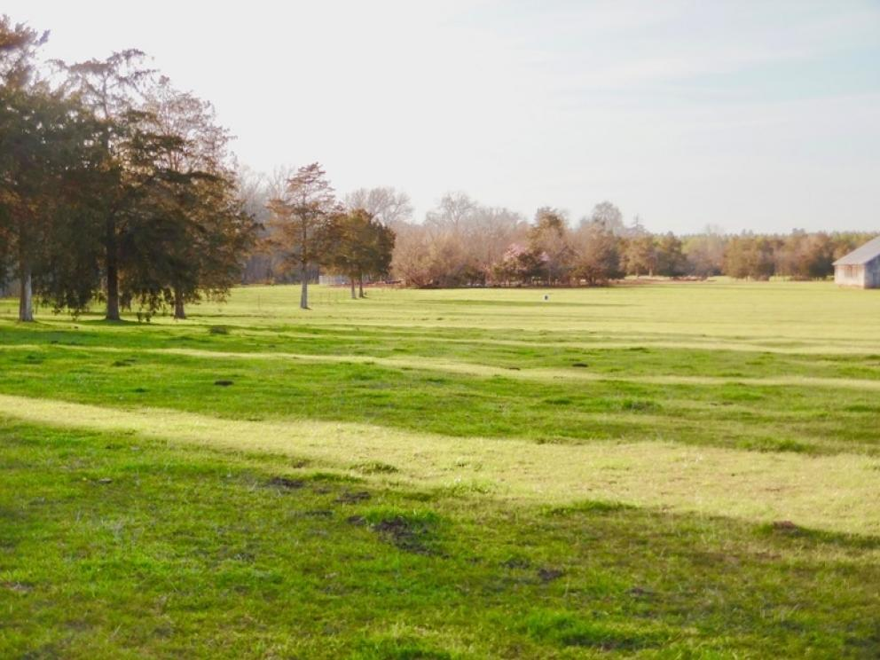 69 5 +/- Acres of Beautiful Land w/Barn, Fencing, Pond
