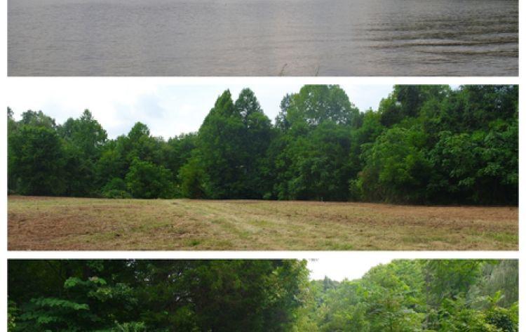Lake anna land-2